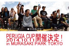 PERUGIA CUP 2014