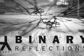 BINARY REFLECTIONS